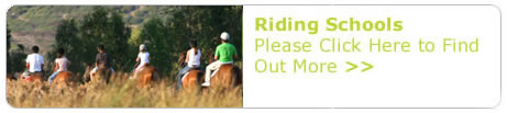 Riding_Button