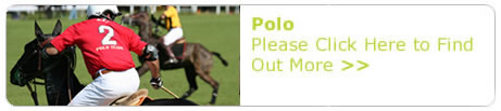 polo_Button